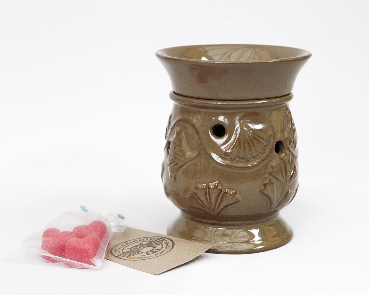 Wax Melt Warmers ~ Sale morning glory wax warmer with celebration scents