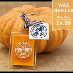 frosted pumpkin fragrance wax pack