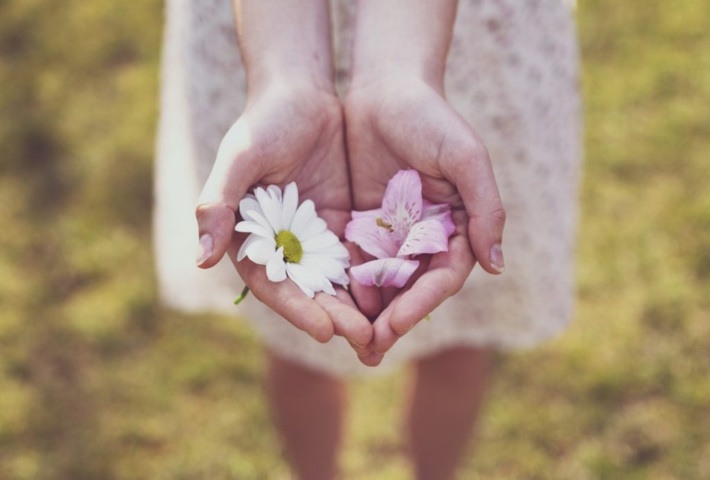 A person holding two flowers in both their hands outdoors in a field.